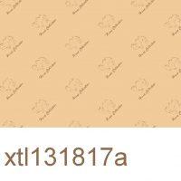 xtl131817a