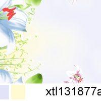 xtl131877a